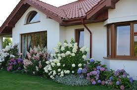 Small Picture Landscaping with Hydrangeas 15 Garden Design Ideas