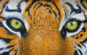 When Tiger Leaps | Psychology Today United Kingdom