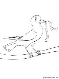 Lente Kleurplaat Vogel Met De Worm Gratis Kleurplaten