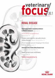 Feline renal proteinuria | IVIS