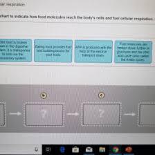 Milarodino Com Page 3 Ac System Flow Chart Water Flow