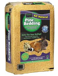 best bedding for guinea pigs reviews