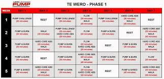 Weider X Factor Workout Chart Pdf Sport1stfuture Org