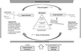 Microfinance Ecosystem How Connectors Interactors And