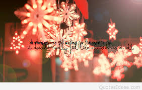 Christmas Lights Quotes Mesmerizing Christmas Lights Quotes