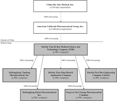 Organizational Chart Of A Drugstore China Sky One Medical Inc Form 10 K A July 23 2010