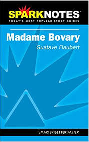 com spark notes madame bovary gustave spark notes madame bovary study guide ed edition