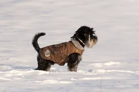 The 25 Best <b>Dog Winter Coats</b> of 2019 - <b>Pet</b> Life Today
