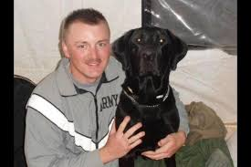 Would You Take a Bullet For Your Dog?   BaxterBoo