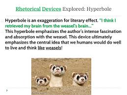 "living like weasels"" analyzing the essay as a class ppt video  17 rhetorical"