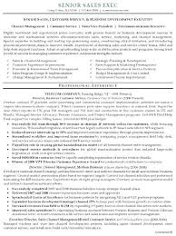 Sales And Marketing Resume Samples Simple Executive Resume Samples Free Putasgae
