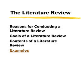 Example Of A Literature Review Essay The Literature Review Reasons For Conducting A Literature Review