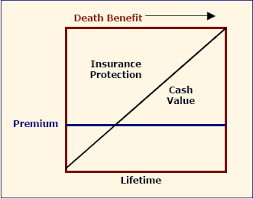 Introduction To Whole Life Insurance