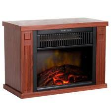 Portable Fireplace  HouzzPortable Indoor Fireplace