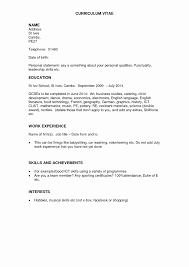 Resume Format With Work Experience Resume Format For 24 Year Experienced Software Developer Awesome 4