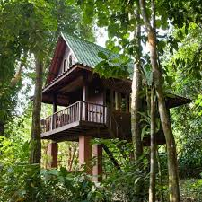 Tree House Pictures Images And Stock Photos  IStockTreehouse In Thailand