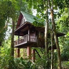 One Of My Favorite Place In Koh Phangan Friendly Staff Mr Deen Treehouse Koh Phangan