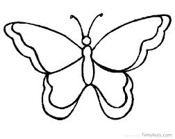 Butterfly Outline Samples Sample Templates Printable Wakacyjnie Info