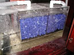 although wet dry filters do an excellent job of housing the bacteria that convert ammonia to nitrate the process ends there