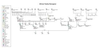 template for genogram in word 8 free genogram templates word excel pdf formats