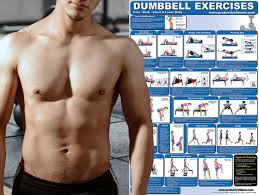 chest exercise with dumbbells laminated dumbbell exercise poster chart lower body core chest