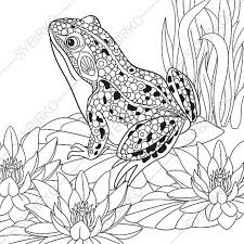 Small Picture Adult Coloring Pages Frog Zentangle Doodle Coloring Book Page