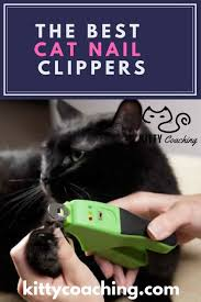 what are the best nail clippers for cats