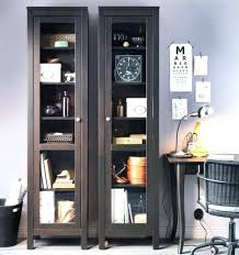 ikea storage cabinets office. Ikea Storage Cabinets Office Images Endearing Magnificent Cabinet With Glass Door C