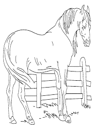Coloriage Cheval Chevaux 2 Colorier Allofamille