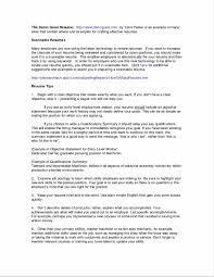Professional Summary Resume Resume Template