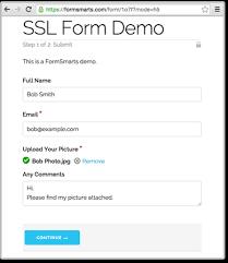 Create Secure Form and Get SSL-Secure Access to Online Form Responses