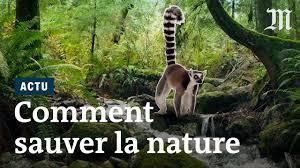 Emmanuel Macron Se Pose En Défenseur De La Biodiversité