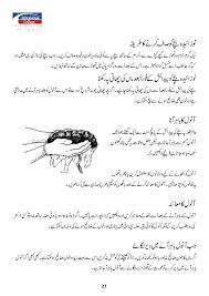 8 Month Baby Food Chart In Urdu Urdu Pregnant Manual