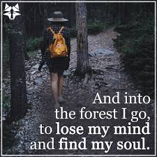 17 Hiking Quotes Quotes For Inspiration And Motivation Walking