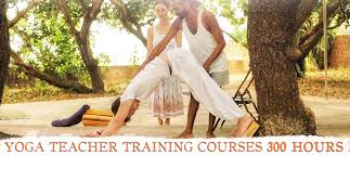 300 hour yoga teacher courses in india dharamsla goa gokarna
