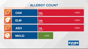 Austin Tx Allergy Chart Oak Pollen Appears For The First Time This Season Around