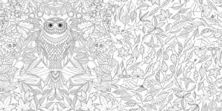 secret garden an inky trere hunt and coloring book