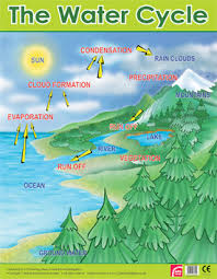 The Water Cycle Learning Chart School Poster