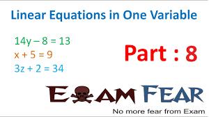 maths linear equation in 1 variable part 8 questions cbse class 8 mathematics viii