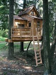 basic tree house pictures. Treehouse Basic Tree House Pictures
