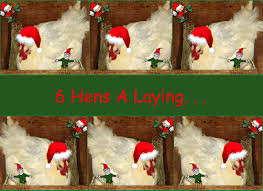 12 Days Of Christmas Country Style  Rural Ramblings12 Days Of Christmas Country Style
