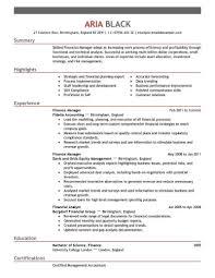 Finance Manager Resume Sample Free Resume Templates