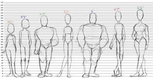 Body Type Chart Body Type Chart Tumblr