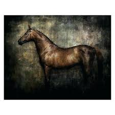 black and white horse canvas horse canvas wall art white horse canvas wall art black and