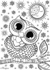 Owl Coloring Pages For Adults Pinterest Everything Diy