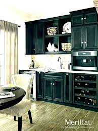 kitchen cabinet doors cabinets reviews basics merillat replacement decorating on a budget instagram best used set
