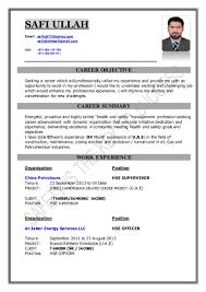 Safety Officer Resume Sample Formidable Fire Safety Officer Sample Resume With Additional