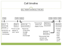 Cell Theory Timeline Worksheet - Switchconf