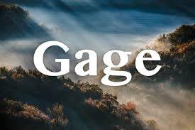 gage name meaning. gage. a name out of england that means either \ gage meaning