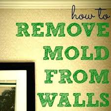 bathroom ceiling mold removal. How To Treat Mold On Bathroom Ceiling Remove From Cool . Removal